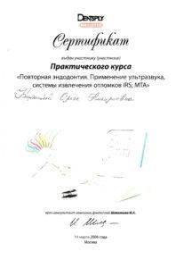 Koshkina 2006_2