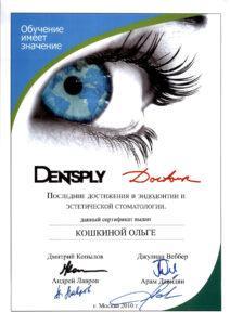 Koshkina 2010_1